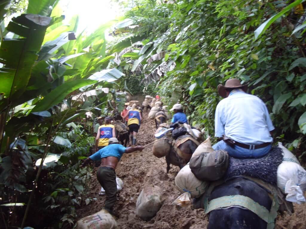 modige advokater i Colombia